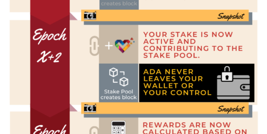 Ultimate Cardano Staking Reward Guide